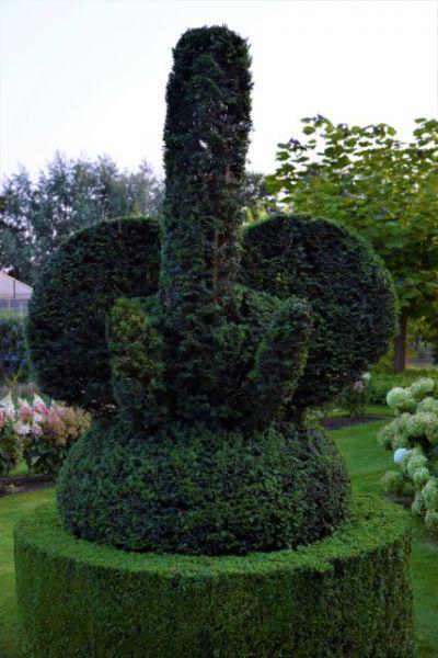 b_800_600_0_00_images_artikelfotos_augustus2019_olifant.jpg